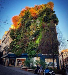 façade végétalisé paris urbanisme